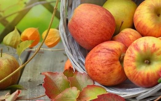 Kreatives Schreiben im Herbst: Erntedank
