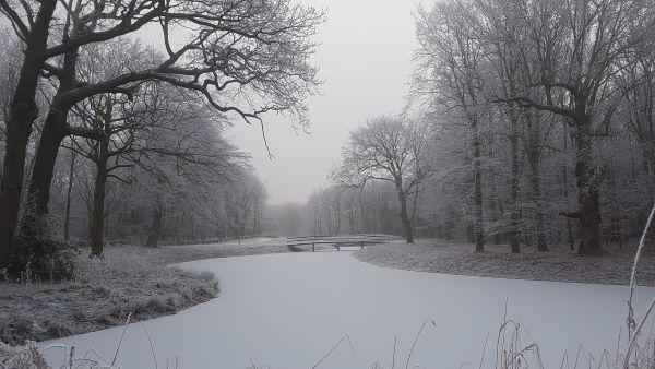 Kreatives Schreiben im Winter: Schlafen und Erwachen