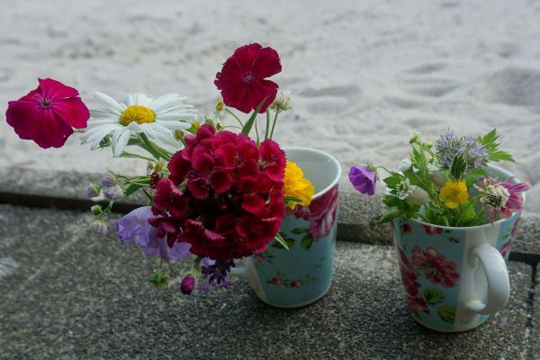 Ritual der neun Blumen